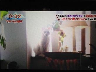 部屋の窓.jpg